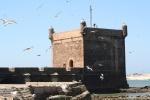 Maroc 245.jpg